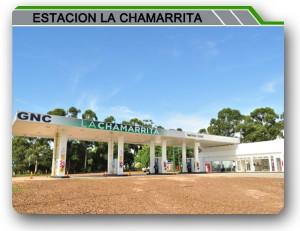 Chamarrita2